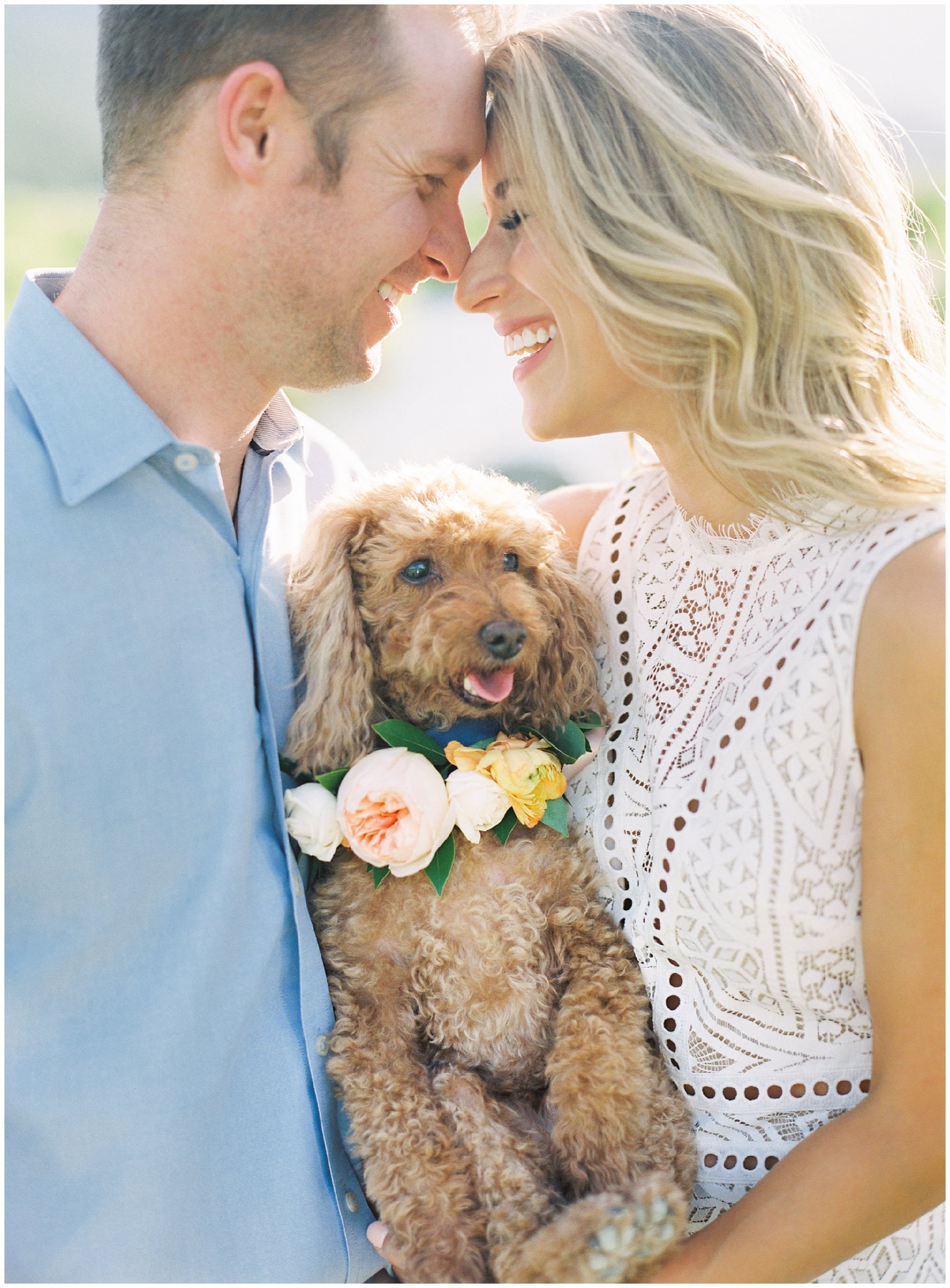 Couple with a cute puppy during their Rocky Mountain National Park Engagement Session